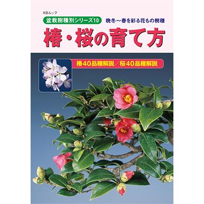 【書籍】盆栽 椿・桜の育て方本 ブック 近代出版
